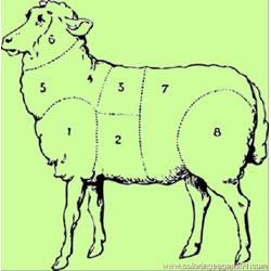 Sheep Butcher Diagram