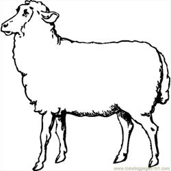 Hnny Automatic Sheep 1.svg.hi