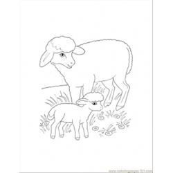 Mother And Lamb Coloring Page
