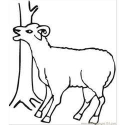 Sheep Near Tree Coloring Page