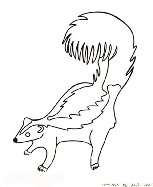 Skunk coloring page free skunk coloring pages for Coloring page of a skunk