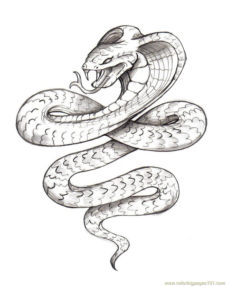 snake 3 coloring page - Coloring Pages Of Snakes 2