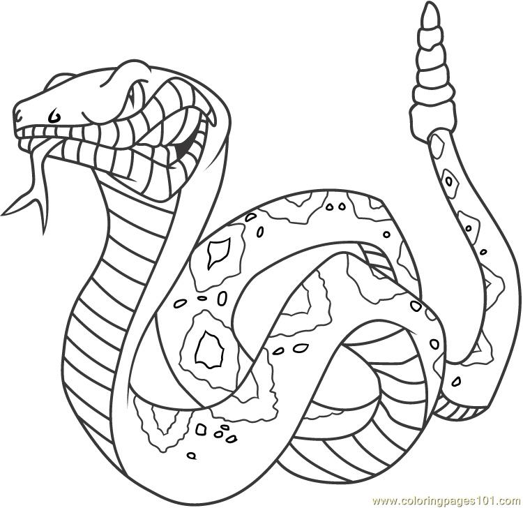 monster snake coloring pages - photo#16