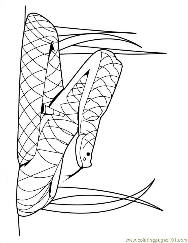 Rattlesnake coloring pages | Free Coloring Pages | 840x650