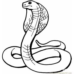 King cobra Free Coloring Page for Kids