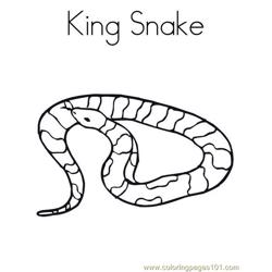 King snake Free Coloring Page for Kids