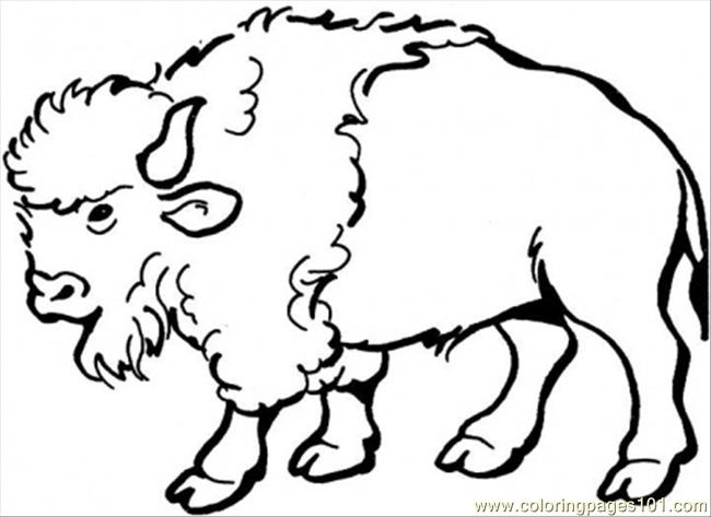 Spanish Buffalo Coloring Page Free Spain Coloring Pages