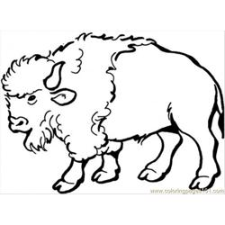 Spanish Buffalo Free Coloring Page for Kids