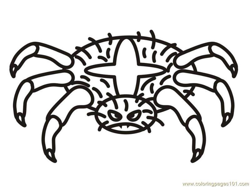 Spider new 11 Coloring Page