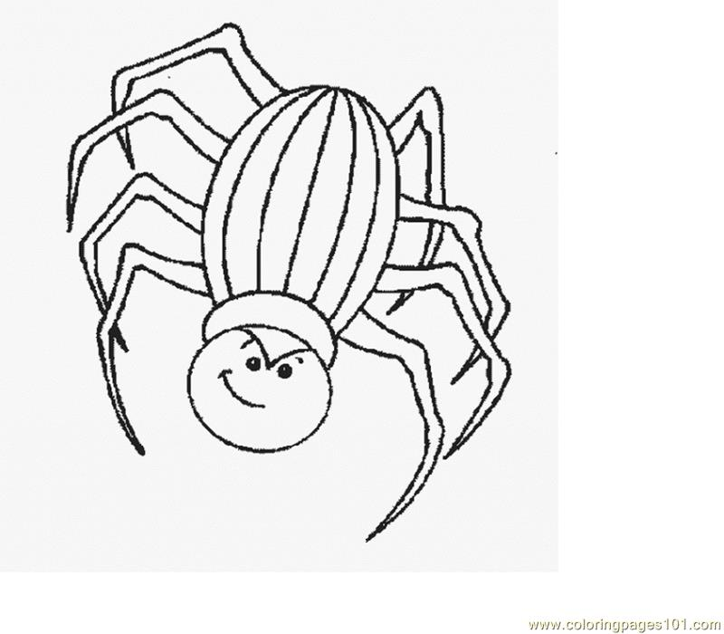 Spider new 36 Coloring Page