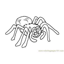 Arachnids Free Coloring Page for Kids