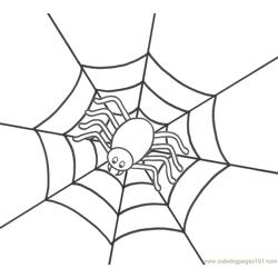 Spider new 48 coloring page