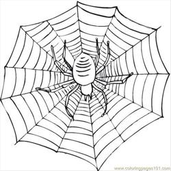 Spider 21 Free Coloring Page for Kids