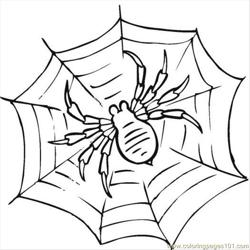 Spider 23 Free Coloring Page for Kids