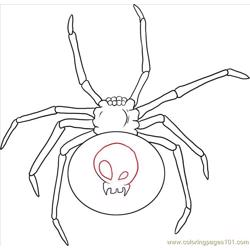 W A Black Widow Spider Step 4 Free Coloring Page for Kids