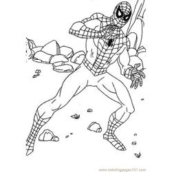 Spider Picture (2) Free Coloring Page for Kids