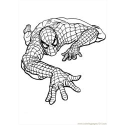 Spiderman Coloring Pages 645