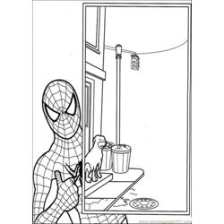 The Picture Has Captured By Spiderman