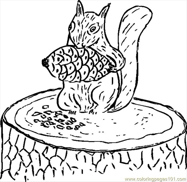 Squirrel Eating Pine Cone.svg.hi Coloring Page