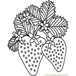 2gardenstrawberriesbw Free Coloring Page for Kids