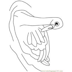 Swan19 Free Coloring Page for Kids