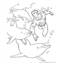 Dolphins Coloring Source Wrk