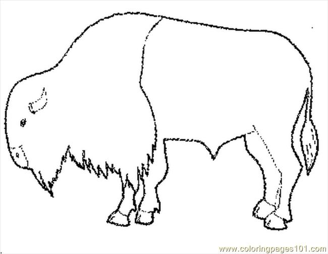Buffalo pictures to color for Bison coloring pages