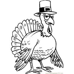 Turkey Wearing Hat