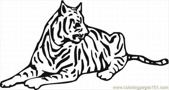 40 Free Tiger Coloring Pages Lrg Coloring Page