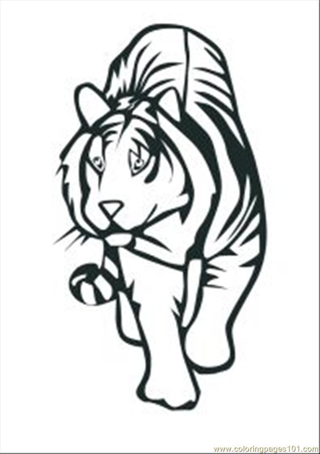 44 Tiger Coloring Pages Free Med Coloring Page