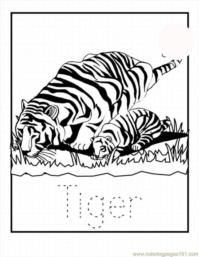 59 Tiger Coloring Pages 14 Lrg Coloring Page