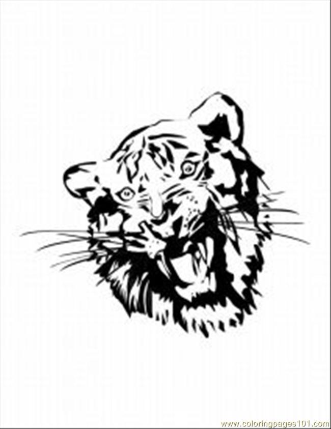 62 Tiger Coloring Pages 9 Med Coloring Page