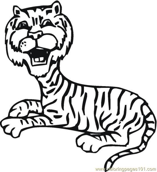 Lionsandtigers (4) Coloring Page