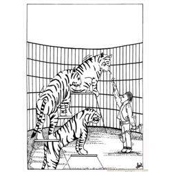 15 Iger Coloring Page Source 9e9