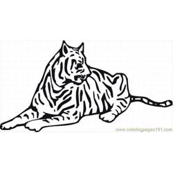 40 Free Tiger Coloring Pages Lrg