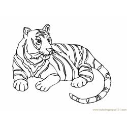 Tiger new 12 Free Coloring Page for Kids