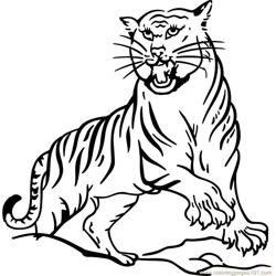 Tiger new 13 Free Coloring Page for Kids