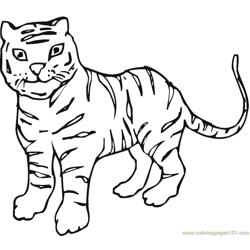 Tiger new 14 Free Coloring Page for Kids