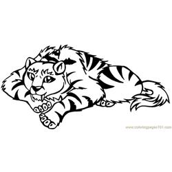 Tiger new 44 coloring page