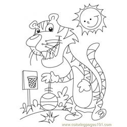 Tiger Coloring Page6