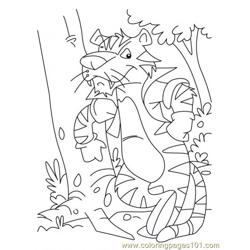 Tiger Coloring Page7