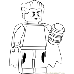 Lego The Collector