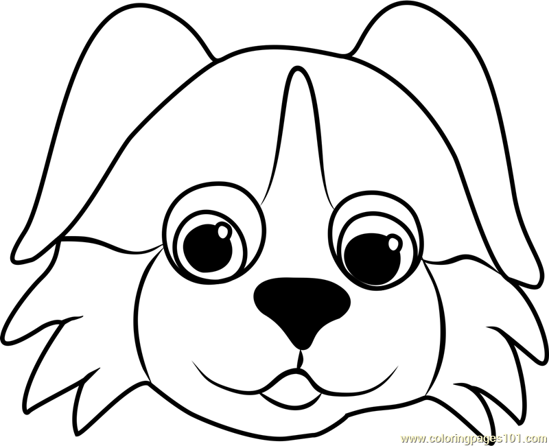 Bernese Puppy Face Coloring Page