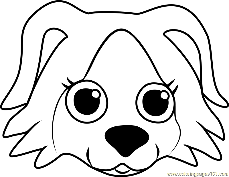 Border Collie Puppy Face Coloring Page Free Pet Parade