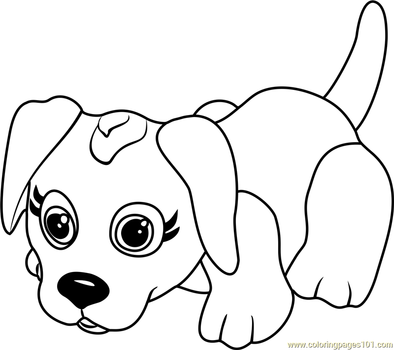 Danish Pointer Coloring Page Free Pet Parade Coloring