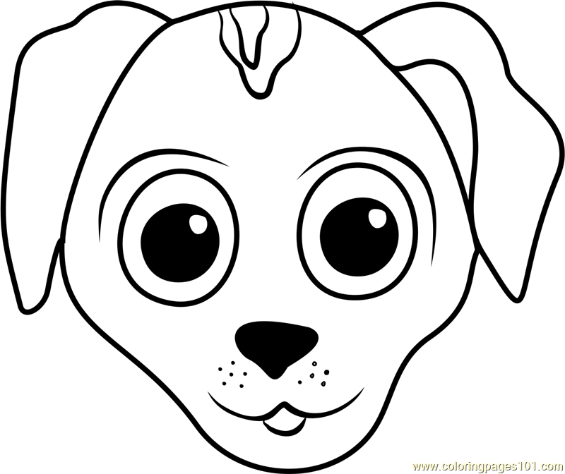 European Shorthair Puppy Face Coloring Page