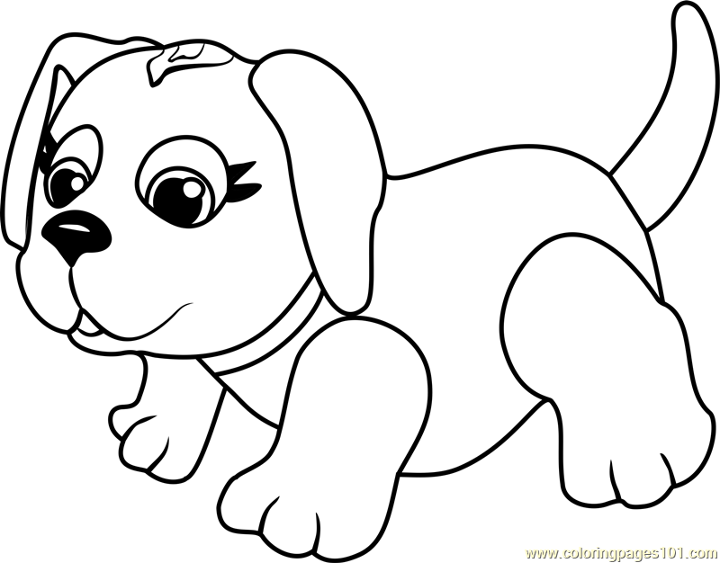 Husky Coloring Page Free Pet Parade Coloring Pages