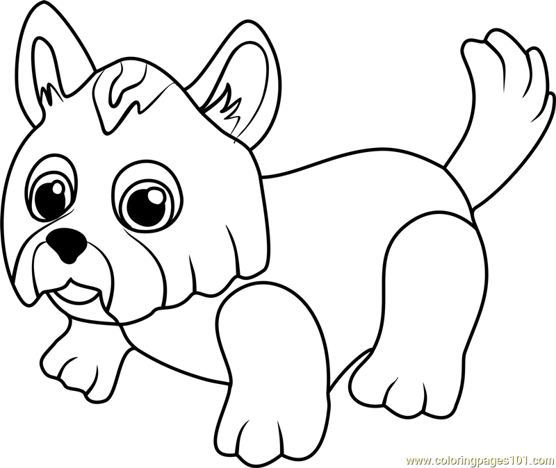 Yorkshire Terrier Coloring Page Free Pet Parade Coloring Pages
