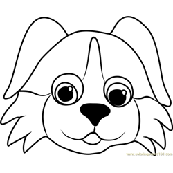 Bernese Puppy Face Free Coloring Page for Kids