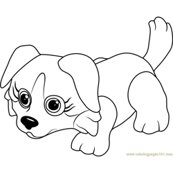 Bernese Free Coloring Page for Kids